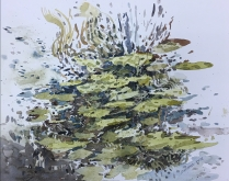 Artist: Zahari Hamidon Title: Water Lilies Year: 2018 Medium: Watercolor on paper Price: Size: 20 X 16 in